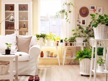 Inquinamento Indoor: aria più pulita nelle nostre case grazie ai metilotrofi
